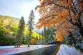 Картинка snow, nature, winter