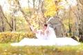 Картинка невеста, листва, девушка, сидит, счастье, осень