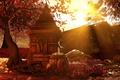 Картинка Осень, Листопад, Красный, Лучи, Far cry 4, Шангри ла, Реликт, Реликвия, Молитвы, Солнце