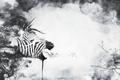 Картинка абстракция, растение, зебра, единорог
