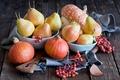 Картинка ягоды, натюрморт, фрукты, овощи, груши, тыквы, осень