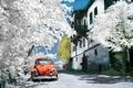 Картинка улица, Стамбул, дом, деревья, автомобиль, istanbul