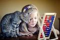 Картинка девочка, друзья, кошка, счёты, кот