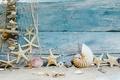 Картинка песок, пляж, звезды, ракушки, beach, wood, sand, marine, seashells, starfishes