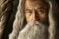 Картинка борода, серый, арт, маг, Gandalf, властелин колец, lord of the rings, старик, Гэндальф, посох