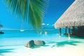 Картинка paradise, яхта, beach, бунгало, океан, Tahiti, бассейн, palm