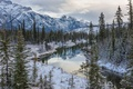 Картинка Canadian Rockies, горы, Jasper National Park, зима, Канадские Скалистые горы, деревья, Alberta, Национальный парк Джаспер, ...