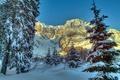 Картинка Альпы, ель, снег, горы, природа, Австрия, зима, деревья