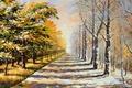 Картинка листва, снег, зима, лето, дорога, деревья