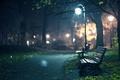 Картинка скамейка, дерево, огоньки, скамейки, ночь, сумерки, дорожки, фонарь, осень, autumn wallpapers, hd wallpapers, осенние обои, ...
