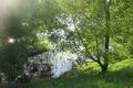 Картинка зелень, лес, лето, трава, вода, солнце, лучи, деревья, зеленый, пруд