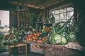 Картинка тыквы, ферма, урожай, рынок