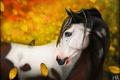 Картинка листья, бабочка, осень, лошадь, природа