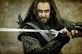 Картинка мечь, Ричард Армитаж, Richard Armitage, Торин Оакеншилд, hobbit, воин, Хоббит