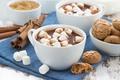 Картинка печенье, маршмеллоу, корица, какао