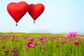 Картинка цветы, В форме сердца, воздушные шары