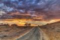 Картинка дорога, небо, поле, пейзаж
