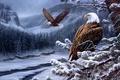 Картинка river, горы, зима, орёл, сосна, ели, лес, орел, painting, шишки, живопись, Spirit of the Wild-Bald ...