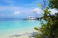 Картинка пляж, океан, берег, остров, Maldives