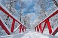 Картинка парк, снег, мостик, зима