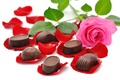 Картинка цветы, красота, petals, букет, конфеты, chocolate, шоколад, красивые, beautiful, rose