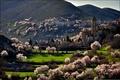 Картинка деревья, горы, город, весна, цветение, Italia, Santo Stefano di Sessanio