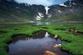 Картинка река, зелень, жизнь, горы, природа