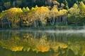Картинка озеро, вода, отражение, склон, туман, деревья, осень