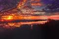 Картинка закат, пейзаж, река, ветки, солнце, вода, город, деревья