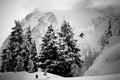 Картинка 686, сноуборд, snowboards
