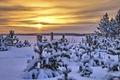 Картинка закат, пейзаж, зима