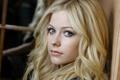 Картинка взгляд, Avril Lavigne, Аврил Лавин, певица