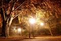 Картинка Фонарь, nature, Lantern, фонари, тропинка., light, autumn, деревья, природа, свет, Park, осень, Дорожка, trees, lights, ...