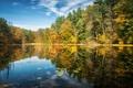 Картинка Connecticut, озеро, отражение, Norfolk, деревья, осень, лес