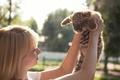 Картинка тигрёнок, девушка, котёнок