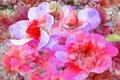 Картинка цветы, рендеринг, лепестки, природа