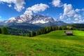 Картинка flowers, горы, дорога, path, trees, walk, sky, лес, spring, forest, природа, house, деревья, mountain, скала, ...