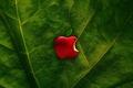 Картинка apple, green