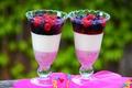 Картинка ягоды, желе, бокалы, десерт