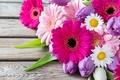 Картинка цветы, ромашки, герберы, тюльпаны