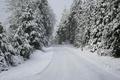 Картинка road, trees, Snow, winter