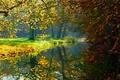 Картинка river, forest, деревья, Природа, осен, autumn, trees, лес, view, пейзаж, nature, scenery, landscape