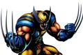 Картинка Росомаха, Люди Икс, комикс, Marvel Comics, Wolverine, белый фон, X-Men, когти