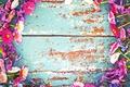 Картинка цветы, доски, рамка, краска, маргаритки