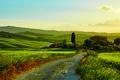 Картинка луга, поля, Италия, дорога, деревья, кусты, Тоскана, Tuscany, зелень, дом, трава