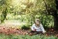 Картинка яблоки, мальчик, природа
