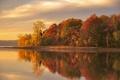 Картинка озеро, отражение, осень, лес
