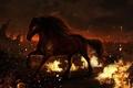 Картинка огонь, животное, конь, лошадь, грива, Фантастика, копыта