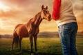 Картинка девушка, пейзаж, лошадь, обработка