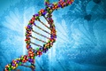 Картинка ДНК, Жизнь, Химия, Молекула, Наука, Биология
